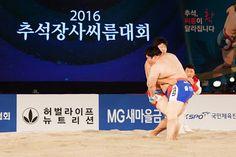 마케팅뉴스 구글블로그: 한국허벌라이프, 전통 스포츠 씨름 9년 연속 공식 후원
