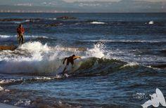 Olhares.com Fotografia | �Tiago | Skim