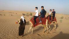 #Morning #Desert #Safari #Dubai for the peaceful leisure in Desert