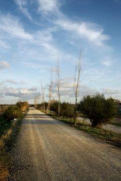 Batlle i Roig | Landscape Barcelona. Environmental Recovery of Llobregat River. Photography: www.jordisurroca.com