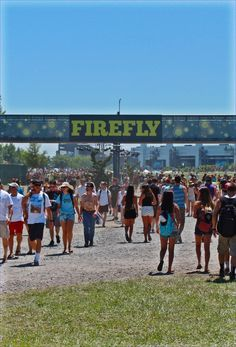 Firefly Music Festival by Michael Ondish