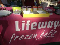 Frozen Kefir (new) by Lifeway