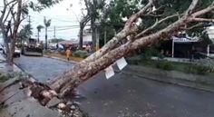 VIDEOS: Así amaneció en Verón e Higüey tras sufrir fuertes ráfagas de viento