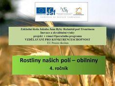 Rostliny našich polí – obilniny 4. ročník> Nasa, Polo, School, Travel, Presentation, Polos, Viajes, Destinations, Traveling