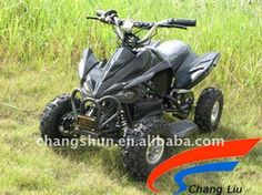 36V800W Electric ATV with CE website: www.harryscooter.com email: sales2@harryscooter.com Skype: Sara-changshun