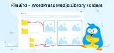 Wordpress Admin, Wordpress Plugins, File Organization, Organize Files, Facts, Content, Website, Videos