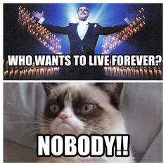 #queen grumpy cat