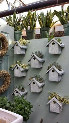 Bird house planters ~ cutouts in the tops for planting succulents or herbs ~ these are inside a greenhouse but could also mount along a backyard fence or in a garden | from I Love My Garden #buildabirdhouse