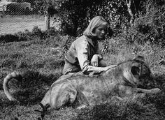 """Born Free,"" Virginia McKenna with Lioness 1966"