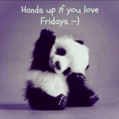 Hands up if you love Fridays:) Cutes little panda pic #fridayfunny