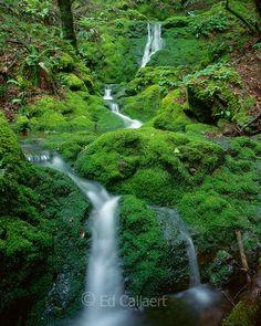 Moss Falls, Mount Tamalpais, Marin County, California