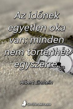 Albert Einstein Quotes Education, Education Quotes, Quotes By Famous People, People Quotes, Happy Quotes, Life Quotes, Happiness Quotes, Success Quotes, Jokes Quotes