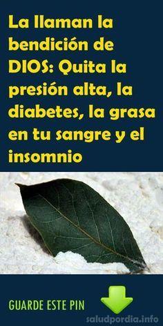 La llaman la bendición de DIOS: Quita la presión alta, la diabetes, la grasa en tu sangre y el insomnio, #diabetes #grasa #salud #laurel