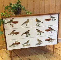 #fågelbyrå #vonWright #svenskafåglar #retrodesign #retro #byrå #butterflyvintage #ButterflyVintageDesign