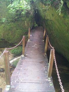Dismals Canyon hiking trail...