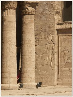 Temple of Horus at Edfu, Egypt. Click for details.