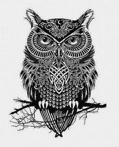 """iColor """"Owls""""  435x539"""