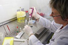 #Sida : un allègement du traitement est possible pour les personnes séropositives - France Info: France Info Sida : un allègement du…