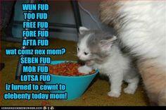 iz lurned to cownt to elebenty today mom!