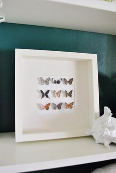 paper butterfly shadow box