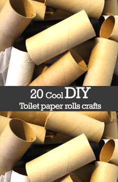 20 Cool DIY Toilet Paper Rolls Crafts