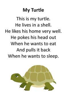 Itty Bitty Rhyme: My Turtle: