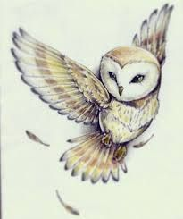 Image result for flying owl tattoo