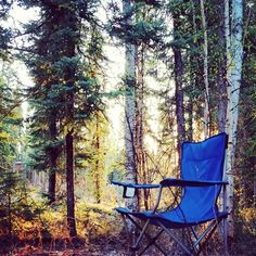 This is how a Monday should be in - Cabin Goddess Photo Archive, Outdoor Furniture, Outdoor Decor, Alaska, Good Morning, Cabin, Places, Buen Dia, Bonjour
