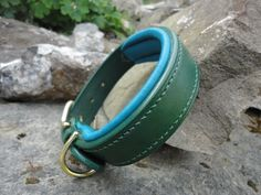 Green and Turquoise Padded Collar