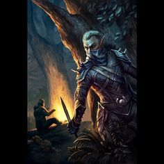 The Elder Scrolls Altmer Rogue