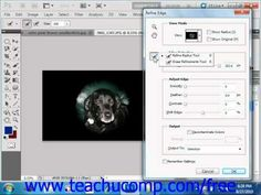 Learn how to refine edges of selections in Adobe Photoshop at www.teachUcomp.com. A clip from Mastering Photoshop Made Easy v. CS5. http://www.teachucomp.com/free - the most comprehensive Photoshop tutorial available. Visit us today!