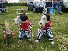 """... Onions\"""" Fun section of the British Wire Fox Terrier Association site"""