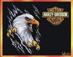 Willy LOVES grandpa's Harley!!