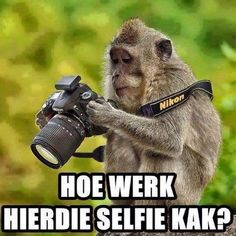 How does this selfie shit work? - Enjoy the Shit South Africans Say!