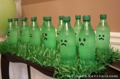 Southern Revivals: DIY Minecraft Birthday Party | How to Pull off an Awesome Party with Limited Resouces