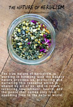The Nature Of Herbalism - For that is the true nature of herbalism -working in harmony with the bounty nature provides us, protecting and nurturing this resource which is shared by all of us, and in return receiving nourishment, health, and the peace that comes only from spending time in the natural world.
