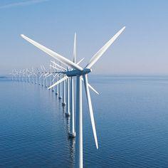 Obama's Climate Action Plan: Domestic Renewable Energy | Tina Gerhardt