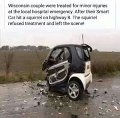 Wisconsin couple were treated for minor injuries at the local hospital emergency. After their Smart Car hit a squirrel on highway 8. The squirrel refused treatment and left the scene.