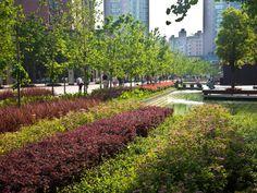 Gubei Pedestrian Promenade by SWA Group « Landscape Architecture Works Landscape Elements, Landscape Architecture Design, Contemporary Landscape, Beautiful Architecture, Urban Garden Design, Park Landscape, Urban Landscape, Modern Landscaping, Garden Landscaping