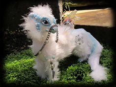 Nix the baby snow guide dragon poseable art doll OOAK. on Etsy, $211.98