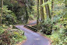 Roaring Fork Motor Nature Trail - Smokies Adventure