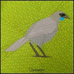 Name: 'Quilting : Kokako 12 inch Paper Pieced Pattern Paper Pieced Quilt Patterns, Quilt Block Patterns, Pattern Blocks, Quilting Projects, Quilting Designs, Quilt Design, Bird Quilt Blocks, Block Quilt, Animal Quilts
