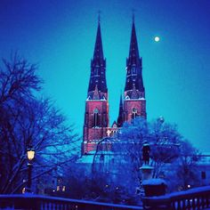 Castle in Sweden, looks so gorgeous!