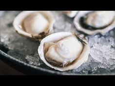 Watch This Badass 'Mother Shucker' Show You How To Shuck An Oyster