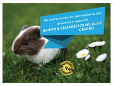 Our First Donations To SAINTS & Elizabeths Wildlife...