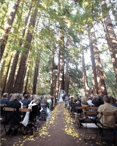 Santa Lucia Preserve, Carmel. would die for an outdoor wedding like this