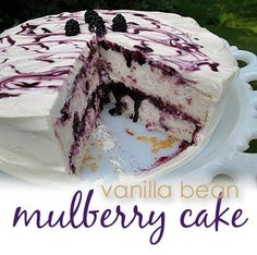 Vanilla Bean Mulberry Cake - Amanda's Cookin' This looks soooo yummy! Fruit Recipes, Cake Recipes, Dessert Recipes, Cantaloupe Recipes, Blackberry Recipes, Radish Recipes, Köstliche Desserts, Delicious Desserts, Yummy Food