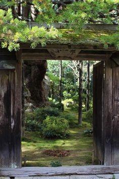 Hosen-in, Un templo budista zen , Hosen -in es uno de los templos más antiguos de la zona. Construido en 1012 , alberga un jardín admirable, donde se invita a los visitantes a sentarse y contemplar mientras disfruta de una taza de té verde servido por los monjes