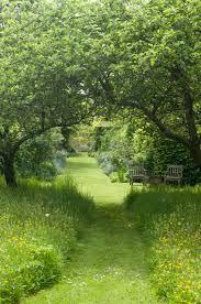 Bildresultat för garden meadow