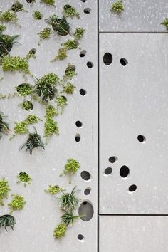 "Detail of the Perforated Metal ""Green"" Skin - San Telmo Museum Extension - Designed by Nieto Soberano Arquitectos. Green Architecture, Contemporary Architecture, Architecture Details, Landscape Architecture, Landscape Design, Building Architecture, Facade Design, Wall Design, House Design"